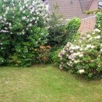DHH-Zentrum-Ganderkesee-Garten